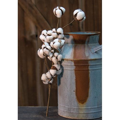 Cotton pick stems