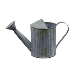 galvanized small watering can